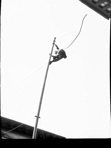 flagpole4-vi