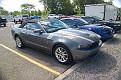 Mustangs Cobras 001