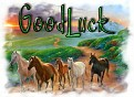 1GoodLuck-peaceonearth-MC