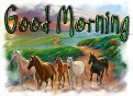1Good Morning-peaceonearth