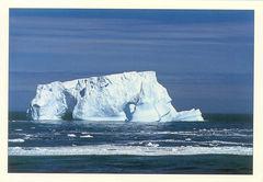 Antarctica - ICEBERG NS