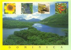 Dominica NS
