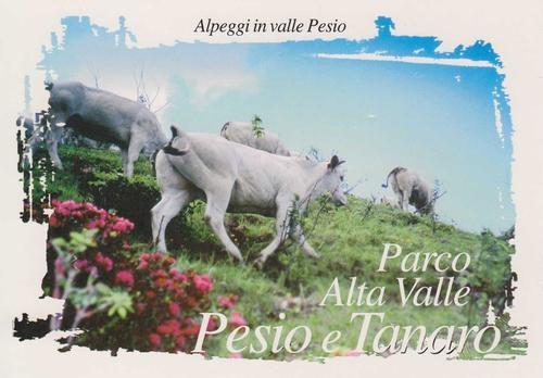 Alta Valle Pesio e Tanaro SP (CN)
