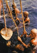 Bahrain - Pearl Diving NT
