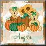 Bears ready for AutumnTagAngela