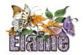 Elaineprettybutterflies