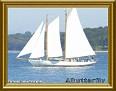 sailboatoncascobaytjcAButterfly-MC.jpg