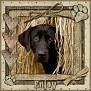 dcd-Enjoy-In The Hay
