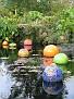 Amazonica Pool Niijima Floats02
