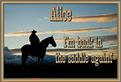 Alice-gailz-Back in the Saddle Again