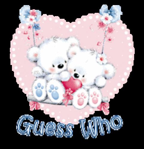 Guess Who - ValentineBearsCouple