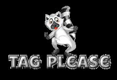 Tag Please - RaccoonStepOnName