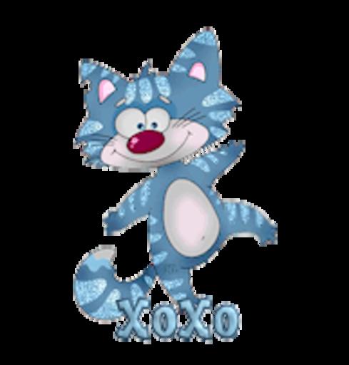 XoXo - DancingCat