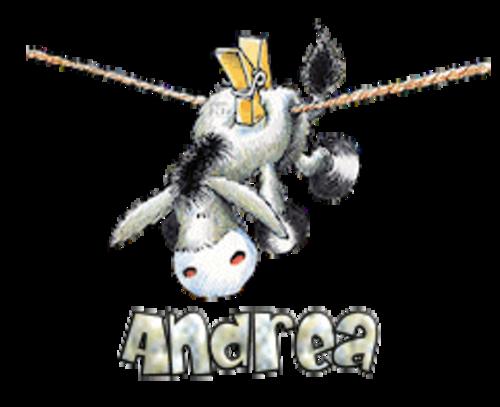 Andrea - DunkeyOnline