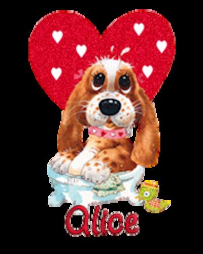 Alice - ValentinePup2016