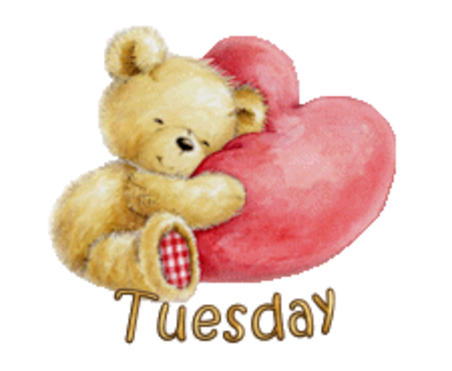 DOTW Tuesday - ValentineBear2016