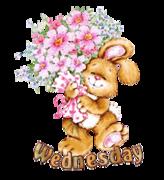DOTW Wednesday - BunnyWithFlowers