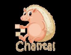 Chantal - CutePorcupine
