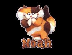 Noah - GigglingKitten