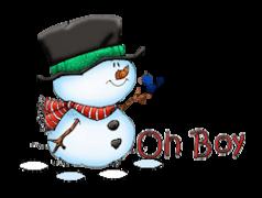 Oh Boy - Snowman&Bird