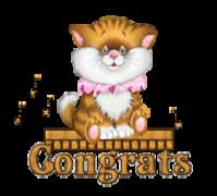 Congrats - CuteKittenSitting