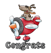 Congrats - DogFlyingPlane