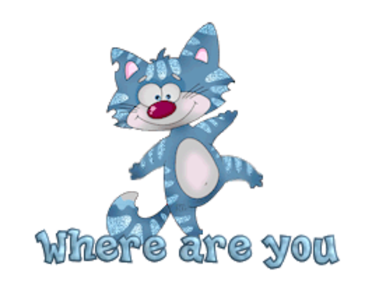 Where are you - DancingCat