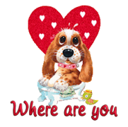 Where are you - ValentinePup2016
