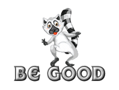 Be Good - RaccoonStepOnName