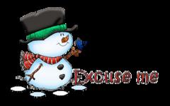 Excuse me - Snowman&Bird