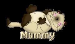 Mummy - KittySitUps