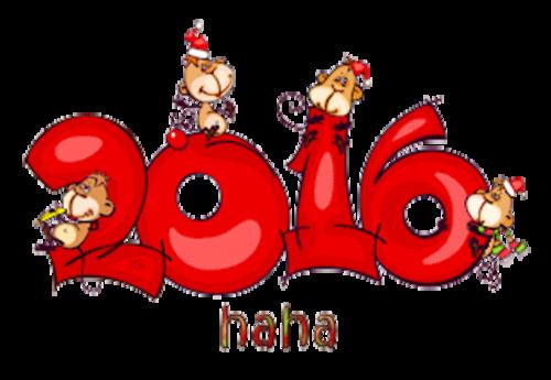 haha - 2016WithMonkeys