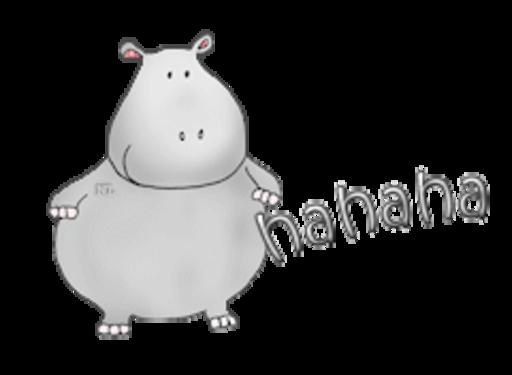 hahaha - CuteHippo2018
