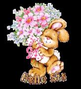 Hello Sis - BunnyWithFlowers