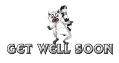 Get Well Soon - RaccoonStepOnName