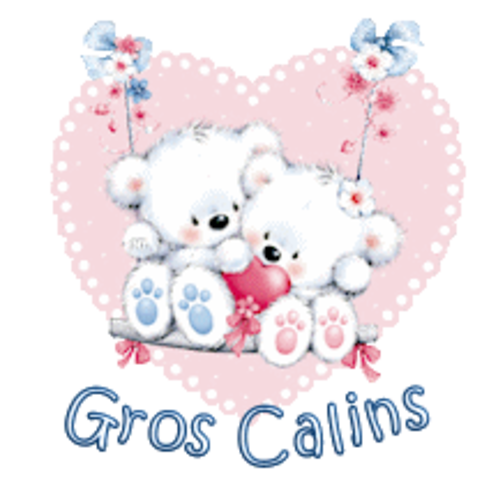 Gros Calins - ValentineBearsCouple