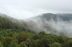 Rolling Fog #12