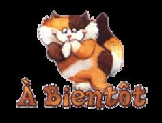 A Bientot - GigglingKitten