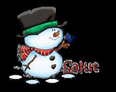 Salut - Snowman&Bird
