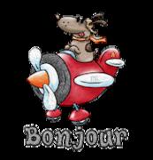 Bonjour - DogFlyingPlane