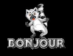 Bonjour - RaccoonStepOnName