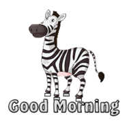 Good Morning - DancingZebra