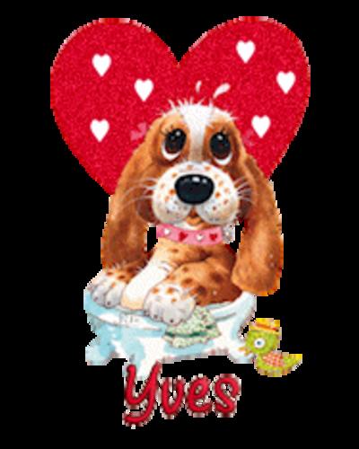 Yves - ValentinePup2016