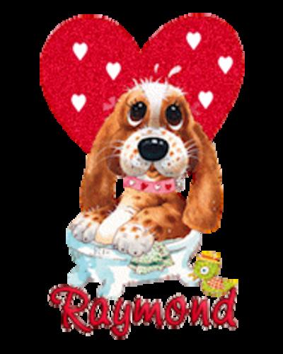 Raymond - ValentinePup2016