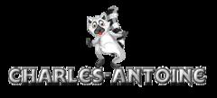 Charles-Antoine - RaccoonStepOnName