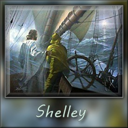 ShelleyMyPilotdjk12-vi