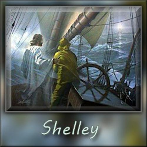 ShelleyMyPilotdjk12-vi