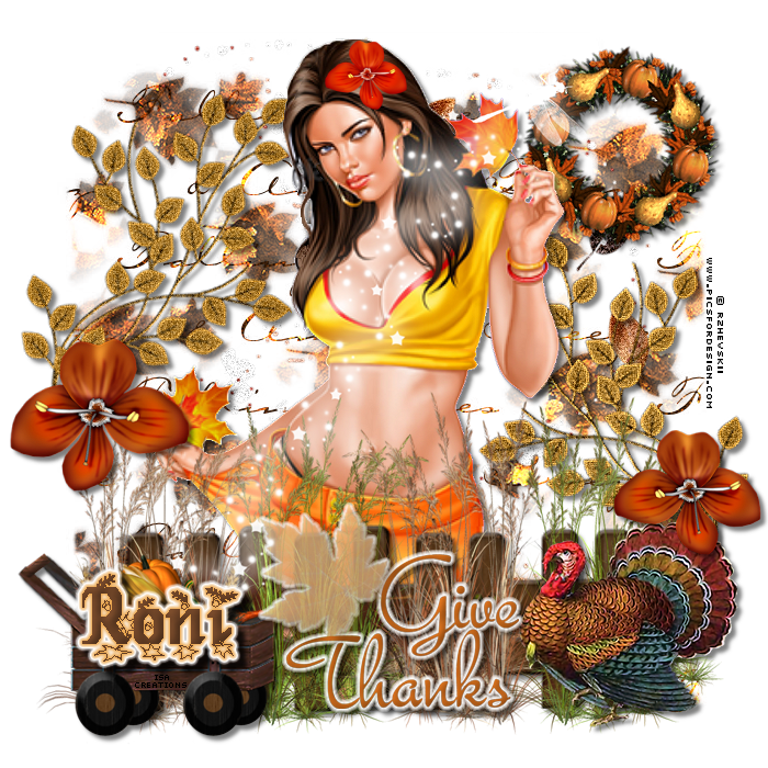THEME OF THE DAY - Page 2 RoniThanksgivingDaybyIsa-vi