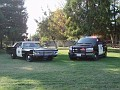 CA - Walnut Creek Police