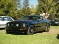 2005 Mustang- police ???